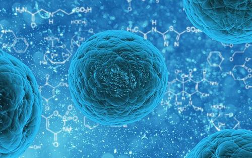 研究发现更安全的干细胞来源疗法可恢复脑部放射