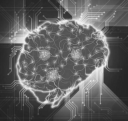 与记忆和情绪相关的大脑区域有助于人类驾驭气味