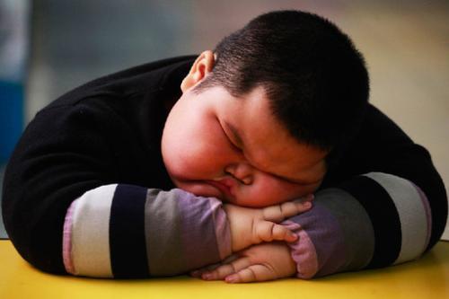 肥胖与大脑形态和结构的差异有关