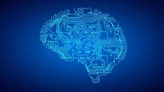 研究人员发现大脑会以相同的方式构建和使用社交网络与物理空间的地图